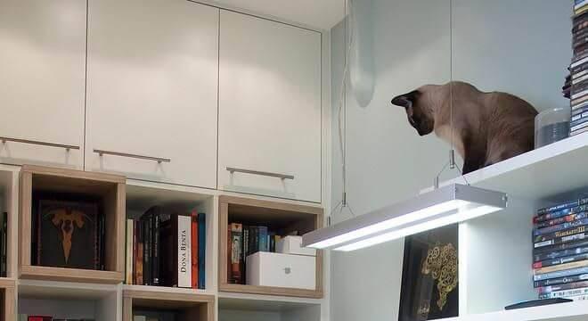 estante com nichos integrados home office an alucia adriano