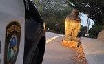 Tudo está em equilíbrio na Califórnia agora que a polícia recuperou uma estátua de pé-grande roubada doBigfoot Discovery Museum