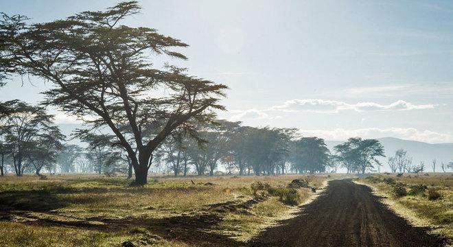Muitos alunos caminham mais de seis quilômetros para chegar a escola no Vale do Rift