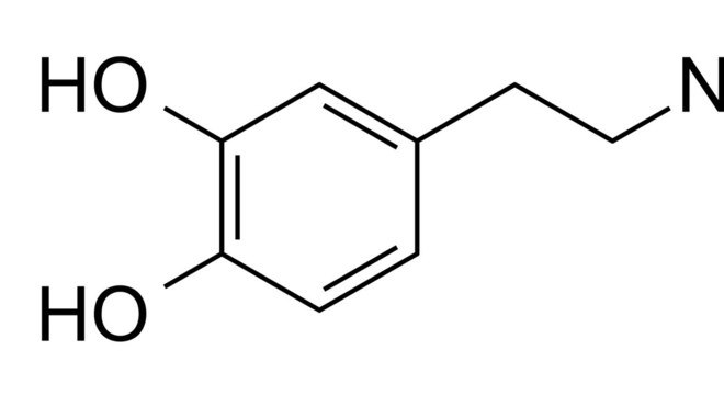 estrutura dopamina