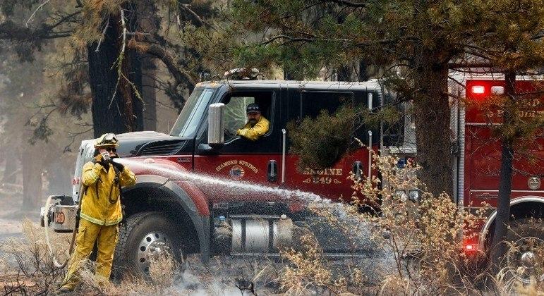 Após dias de trabalho, os bombeiros conseguiram impedir o avanço do incêndio