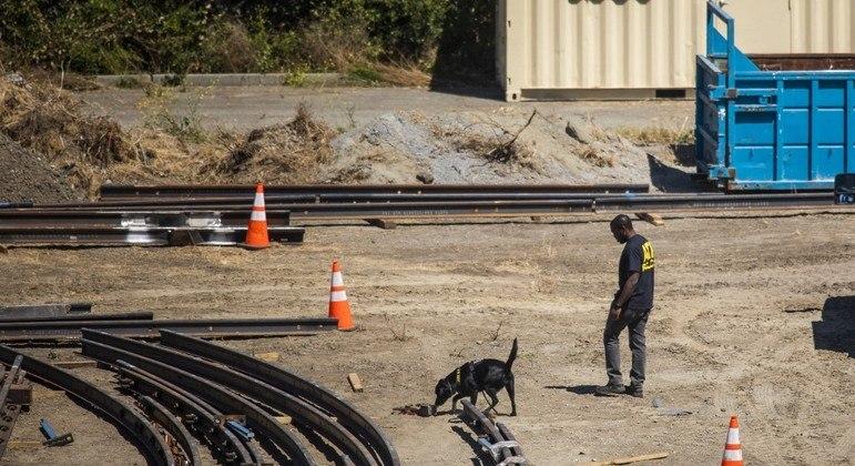 Cães farejadores da polícia localizaram explosivos no pátio onde aconteceu o tiroteio