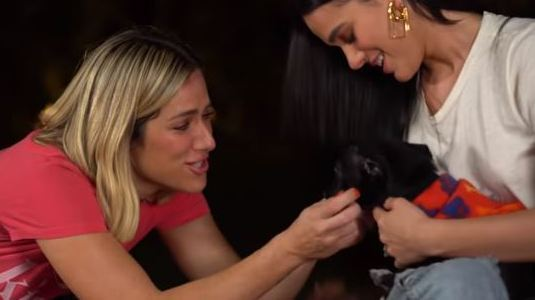 Marquezine e Ewbank fazem desafio para promover adoção de animais (Reprodução/Youtube)