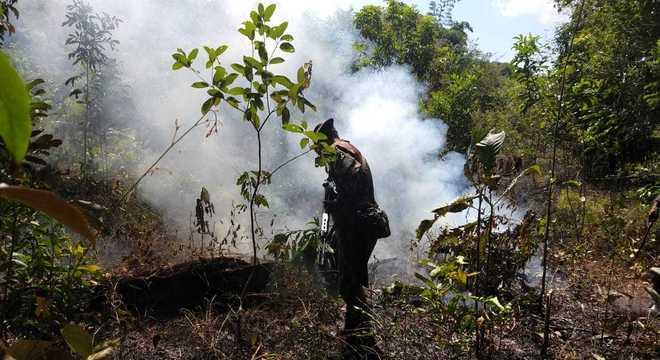 Militares vão atuar no combate ao desmatamento ilegal na Amazônia