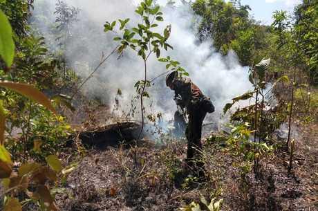 Clima agrava queimadas na Amazônia, diz Nasa