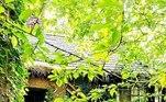 Um explorador urbano conhecido como Kyle encontrou uma casa muito estranha em uma área com florestas, em Flintshire, no Reino Unido. Ao contrário de casas abandonadas, quase sempre vazias, esta tinha diversos sinais e pistas de quem morou lá anteriormente. Em diversas fotos, Kyle tenta decifrar esses sinais