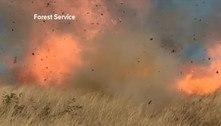 'Chá de revelação' causou um enorme incêndio florestal nos EUA