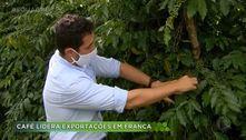 Café lidera exportações em Franca
