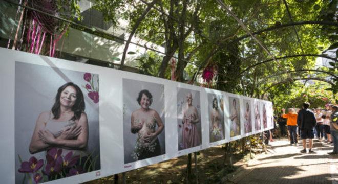Exposição Artemisa na Casa das Rosas. Foto: Divulgação