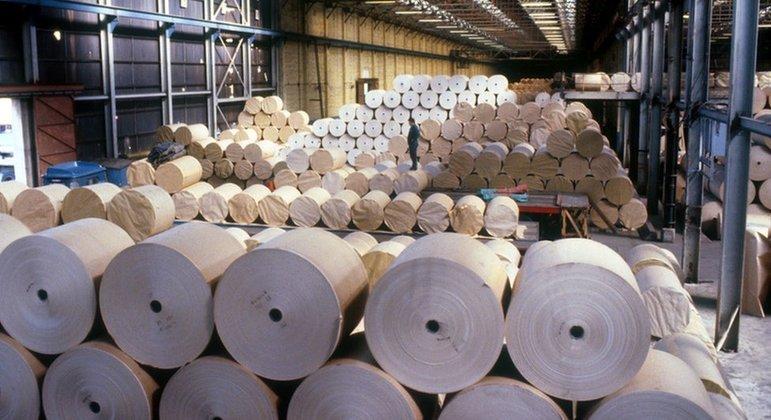 Fabricantes de papel higiênicos estão em alerta após encarecimento da matéria-prima no Brasil