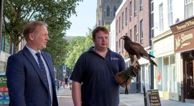 Aves caçadoras trabalharão oito horas por dia em Worcester