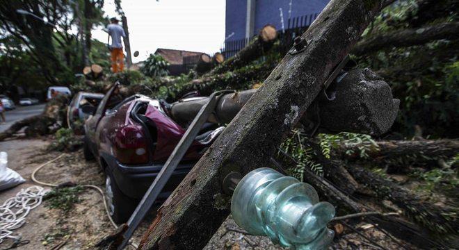 Árvores derrubam postes e causam estragos em SP