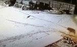 'O fazendeiro não teve tempo de pegar seu rifle e começou a lutar com as mãos nuas com o animal', afirmou um relatório de autoridades locais, publicado pelo site Eao.ru. O fazendeiro afirmou para o site que temia que o lobo atacasse animais da propriedade. Segundo ele, dois cães foram mortos e um cavalo foi atacado por lobos nas últimas semanas
