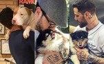 Felipe Titto, que na segunda-feira (12) foi detido pela Polícia após tentar impedir o abandono de um cachorro, não esconde de ninguém o carinho que sente pelos animais de estimação. O apresentador é dono de quatro cachorros e vive compartilhando os momentos com eles nas redes sociais