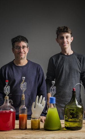 Fernando e Leonardo e algumas de suas peripécias fermentativas