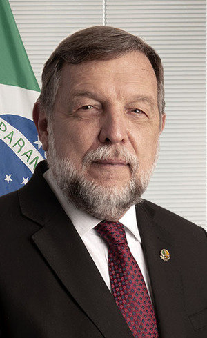 Senador Flávio Arns (Rede-PR)