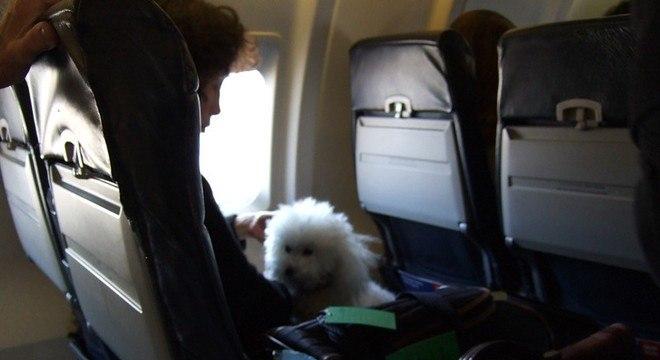Passaporte e certificado veterinário são necessários para viagens ao exterior