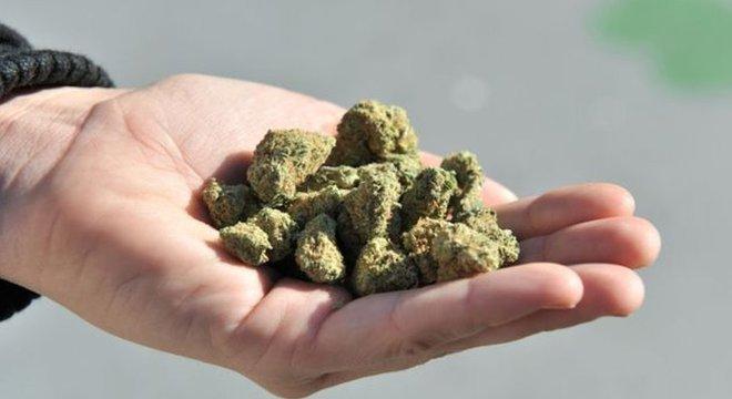 Em 2012, o Uruguai anunciou que seria o primeiro país do mundo a legalizar o uso recreativo de cannabis