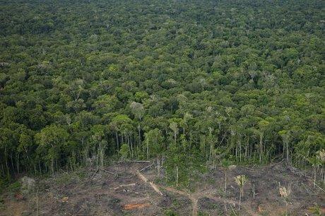 Nessa semana, a Alemanha também interrompeu repasses ao Brasil para combater o desmatamento da Amazônia