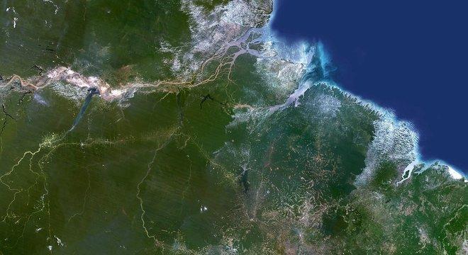 Brasil usa programa de satélite que rastreia a perda de árvores em grande escala, mas há sinais de que os proprietários de terras estão desmatando áreas menores para escapar da detecção, diz reportagem