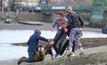 Uma amada e famosa foca apelidada de Freddie Mercury foi morta no domingo (21) e deixou parte da população de Londres de luto. O animal precisou ser sacrificado após receber diversas mordidas de um cão que andava sem coleira nas margens do rio Tâmisa