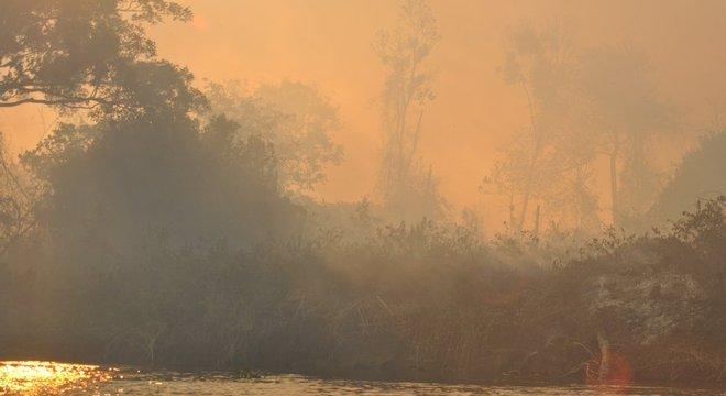 Entre os dias 1º de agosto e 31 de outubro, o número de focos de queimadas no Pantanal cresceu 506% na comparação com o mesmo período do ano passado