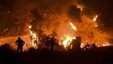 Incêndios na Grécia queimaram 100 mil hectares em duas semanas