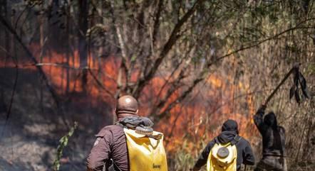 Incêndio atingiu o Parque do Juquery, em Franco da Rocha