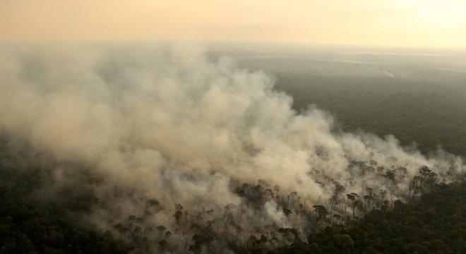 Fogo costuma ser usado por grileiros para 'limpar' áreas de floresta e substituí-las por pastagens