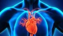 Pesquisa mostra aumento de mortes por doenças cardiovasculares na pandemia