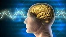 Inteligência se mantém com a idade e é hereditária, revela neurocientista