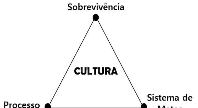 Fonte: Triângulo de Sobrevivência de Massari – Hiflex Consultoria – 2019 – Todos os direitos reservados