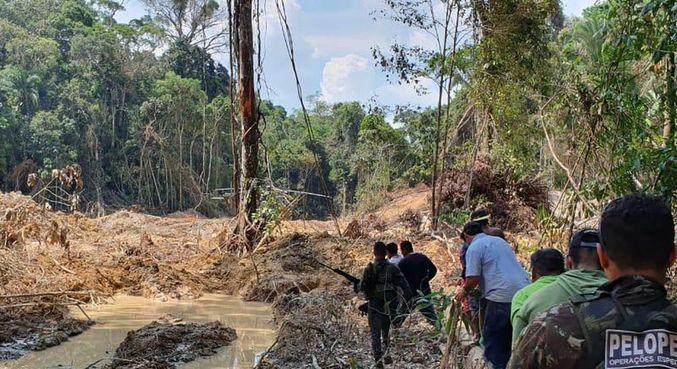 Desmatamento ilegal na região da Amazônia