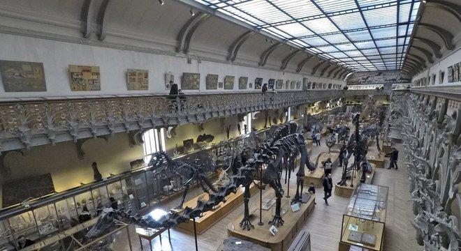 Museu em Paris é um dos maiores do mundo, ao lado do de Londres