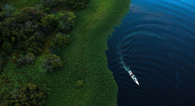 A Amazônia é destacada na pesquisa como um dos exemplos de biomas que abriga áreas de mata virgens