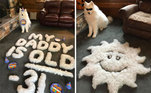 Esta família foi um pouco mais além: usou o bolo de pelos para escrever e desenhar no chãoVale seu clique:Cachorros abandonados 'escrevem cartas' ao Papai Noel pedindo um lar