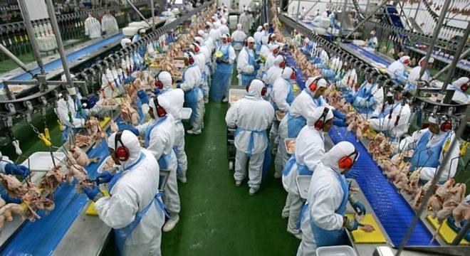 China disse que amostra de frango do Brasil teve teste positivo para coronavírus