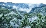 Uma forte geada cobriu o campo na cidade de Cascavel, no oeste do Paraná, na manhã desta terça-feira (29). Os termômetros marcaram -2ºC, mas a sensação térmica chegou a -5ºC, conforme o Simepar (Sistema de Tecnologia e Monitoramento Ambiental do Paraná). O frio intenso continuará e as temperaturas devem baixar mais até quinta-feira (1º)