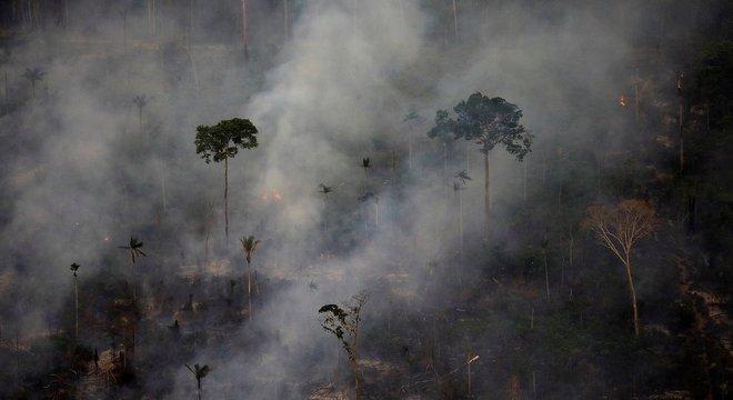 Ysani avaliou situação da Amazônia em vídeo divulgado pelo governo