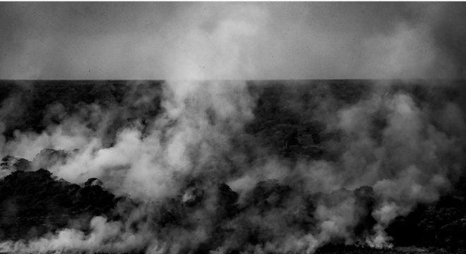 Sem chuva, incêndio no Pantanal tem se propagado com facilidade