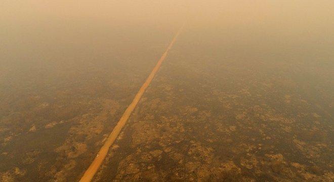 Fogo no Pantanal pode provocar falta de água ou alimentos para animais