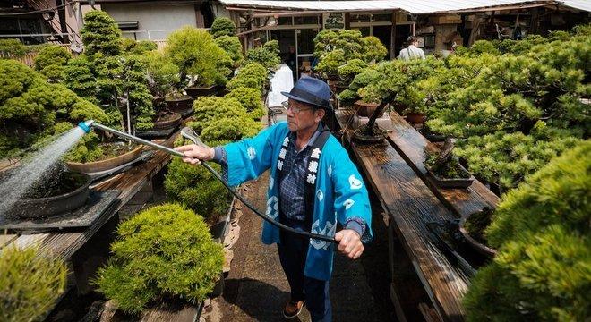 A residência do casal em Saitama, no Japão, tem uma vila dedicada a Bonsais