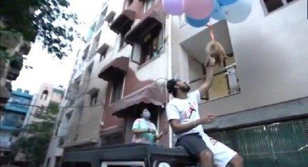 Youtuber foi preso após fazer cachorro voar amarrado a balões
