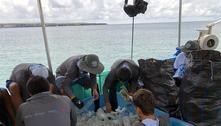 Ambientalistas recolhem 4,6 toneladas de lixo em Galápagos