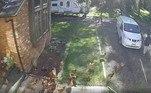 Voltando para a van, as aves continuam a acompanhá-loVEJA MAIS:Vaca desaparecida é resgatada após ser encontrada presa em trampolim