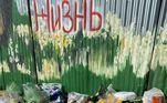 Agora, depois de atrair atenção internacional, Pavel ajuda abrigos em várias cidades russas. O menino também colaborou com a criação de um projeto deesterilização para animais de rua