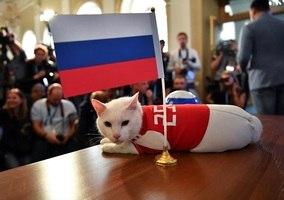 f4a1c9c4a60d1 Rússia proíbe nigerianos de levarem galinhas a estádios durante a ...