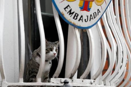 Embaixada deu novas regras para Assange continuar na casa
