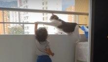 Gato protege criança que tenta se pendurar no parapeito da varanda