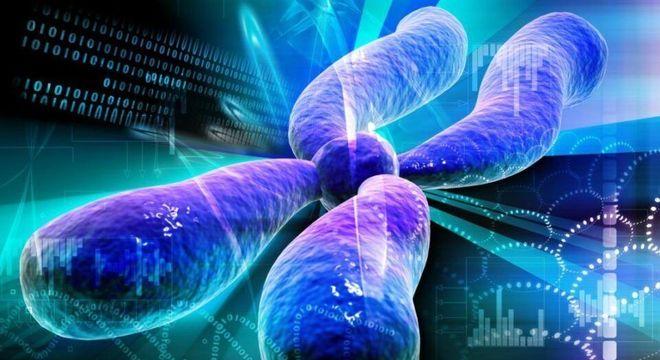 Genética - O que é, os elementos básicos e as principais descobertas